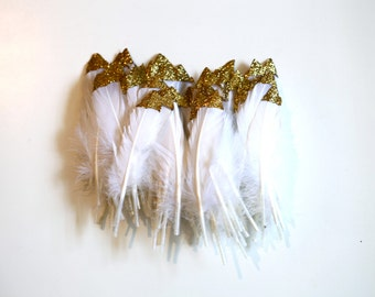 100 Dipped feathers CLEARANCE