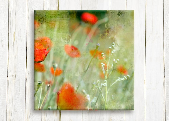 """Red poppies, Canvas art print, 12""""x12"""", gift idea"""