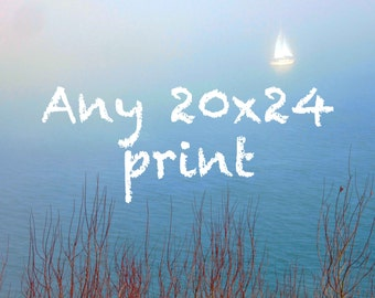 Any 20x24 Print