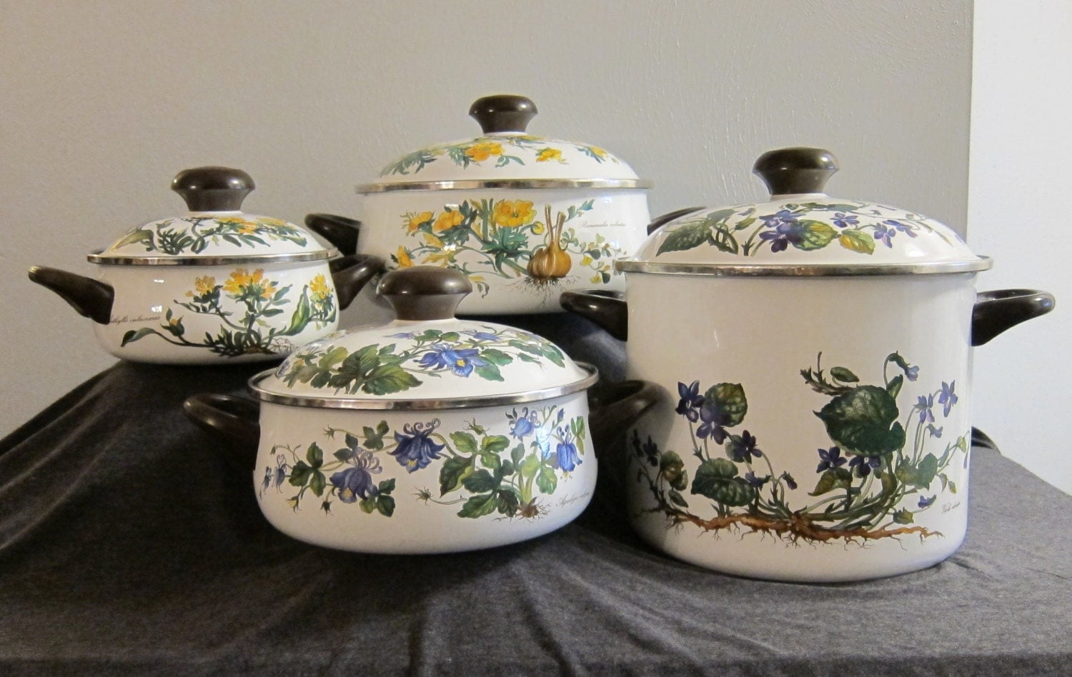 vintage villeroy boch botanika enameled metal cookware set. Black Bedroom Furniture Sets. Home Design Ideas