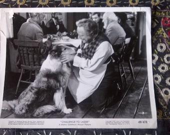 """still from """"Challenge to Lassie"""" 1949 MGM black and white Edmund Gwenn"""