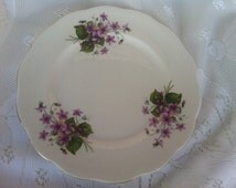 Queen Anne bone china violet plate