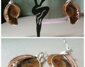 Ammonite, silver and rose gold earrings