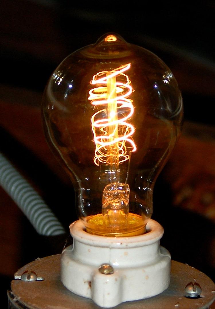 Edison Globe Light Bulb 60 Watt Antique By Snakeheadvintage
