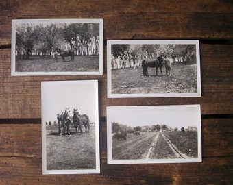 vintage photographs- farmers, collection of four photographs