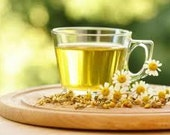 Roman Chamomile Herb, Easy to Grow Perennial, 50 Seeds