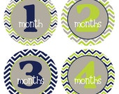 Baby Month Milestone Stickers Month by Month Monthly Sticker Baby Month Stickers Monthly Baby Stickers Photo Boy Baby Shower Gift, BMST003