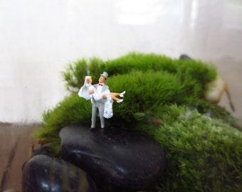 Over the Threshold.... Terrarium AccessoryMiniature Couple Fun Wedding Gift Terrarium Miniatures Bride and Groom Wedding Miniature