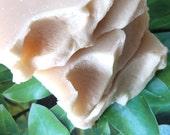Southern Magnolia, Homemade Vegan Soap, Natural Homemade Soap, Large 4.5-5 oz. bars