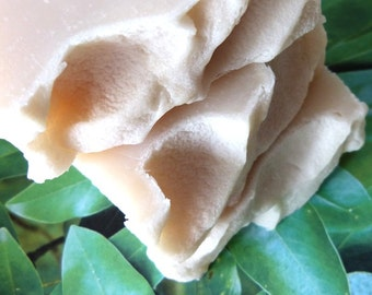 Magnolia, Homemade Soap, Vegan Soap, Natural Soap, Floral, Southern Magnolia