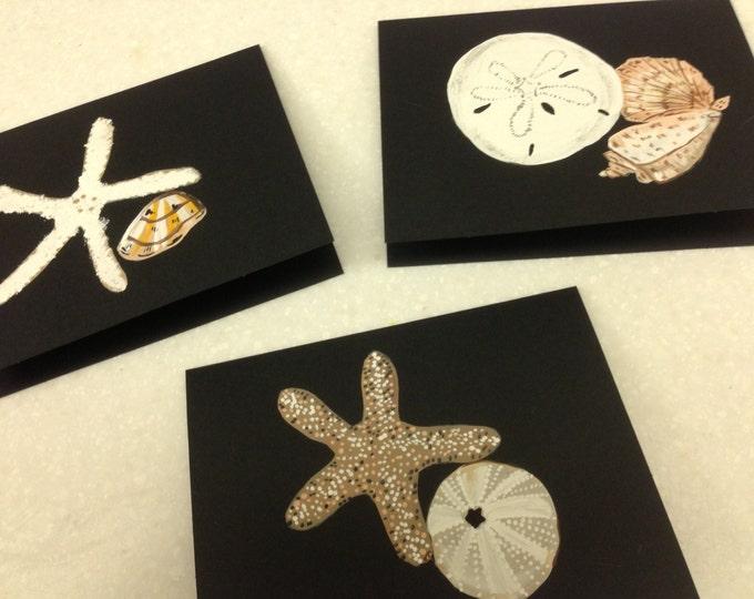 Seashells and Sanddollars - Black Cards and Envelopes - Set of 6