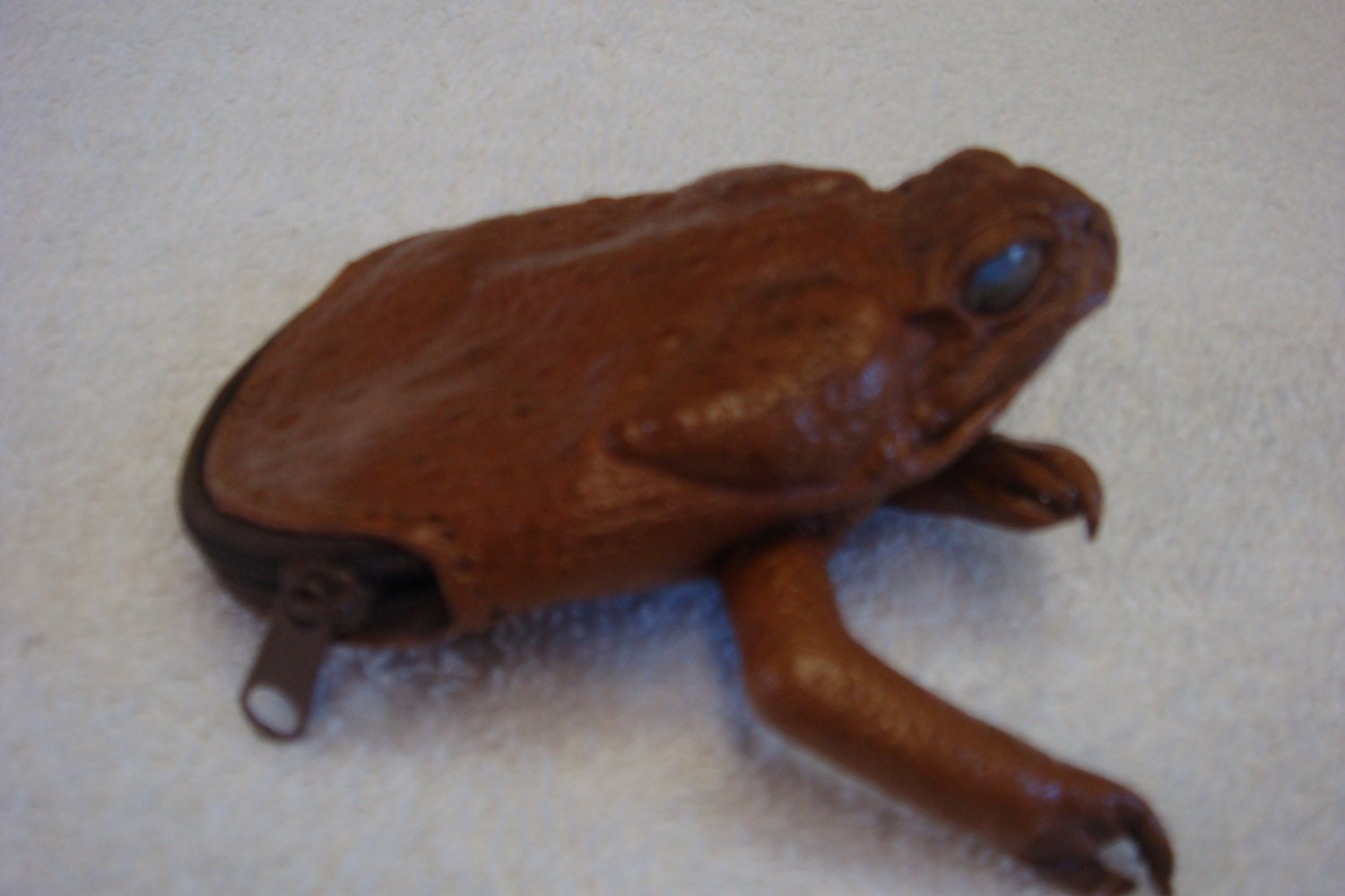 Cane Toad Coin Purse Or Bag Toad Skin Frog Part