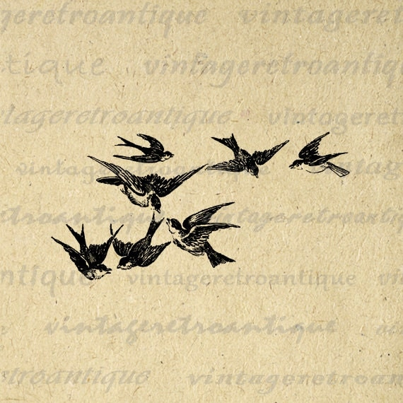 Flying Bird Illustrati...