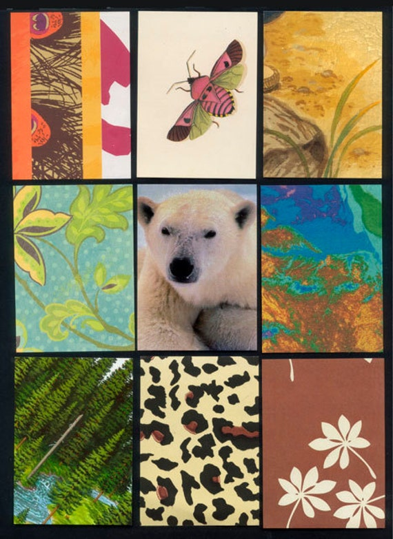 Nature Artist Trading Card Backgrounds Precut And Ready To