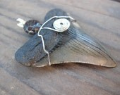 Sale: Pendant Megalodon Shark Tooth and Agate with Silver Wire Wrapped Handmade Pendant