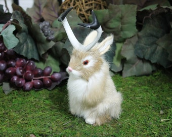 Tan Brown Jackalope Rabbit with Horns Easter Bunny Furry Animal Taxidermy Decor