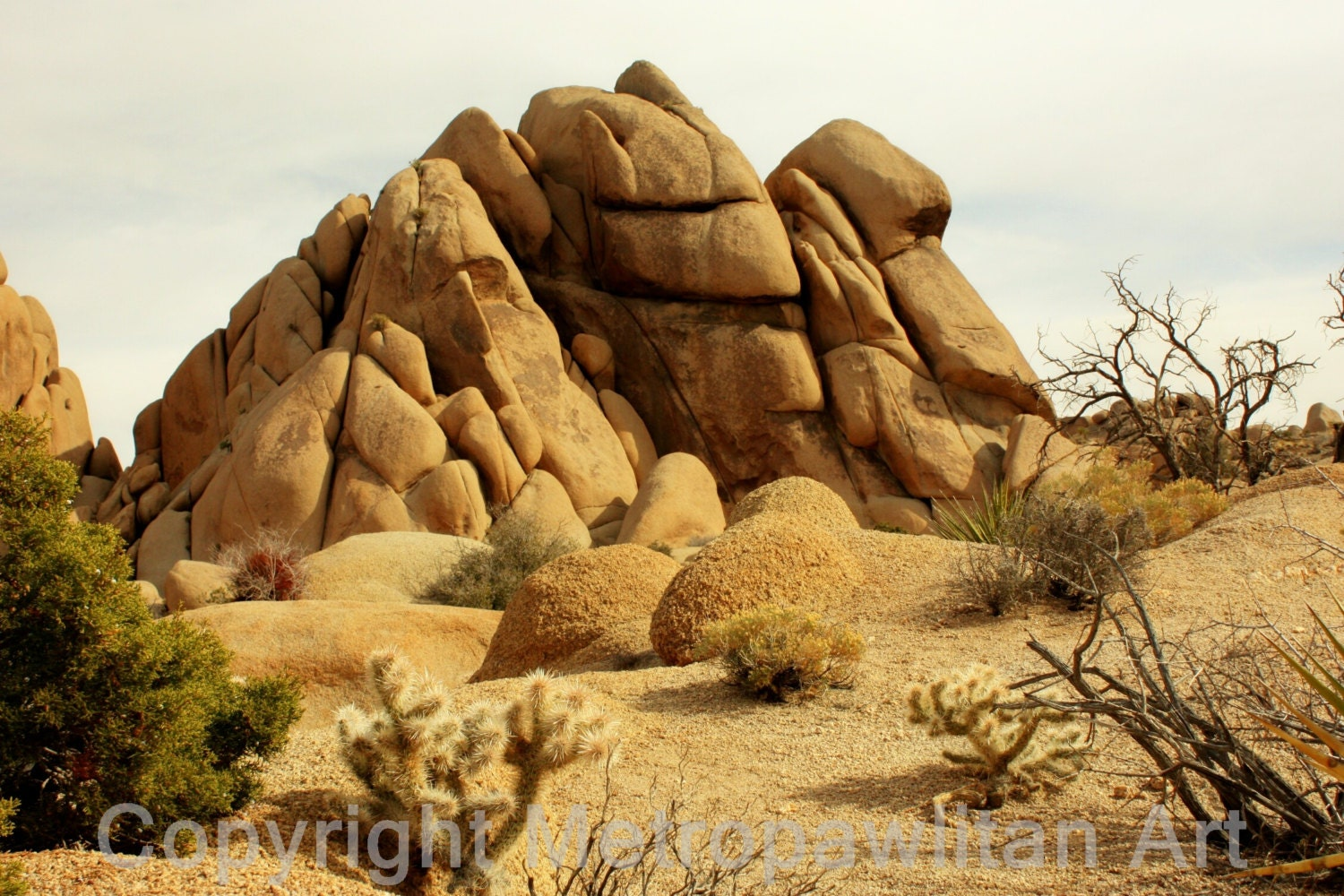 16x20 Photograph Rock Formation At Joshua Tree National Park