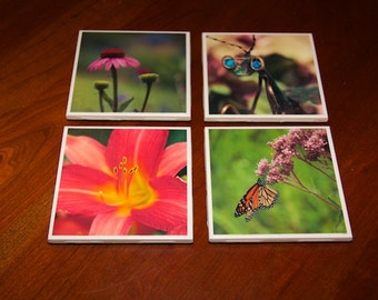 Summer images photo coasters, set of four. Ceramic tile coasters. Great Mother's Day gift.  Praying mantis, day lily, butterfly, coneflower.