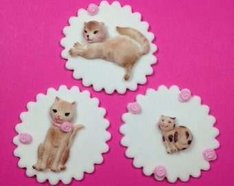 12 Edible Fondant Cats cupcake toppers