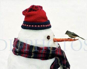 Snowman and Bird, Fine Art Photograph