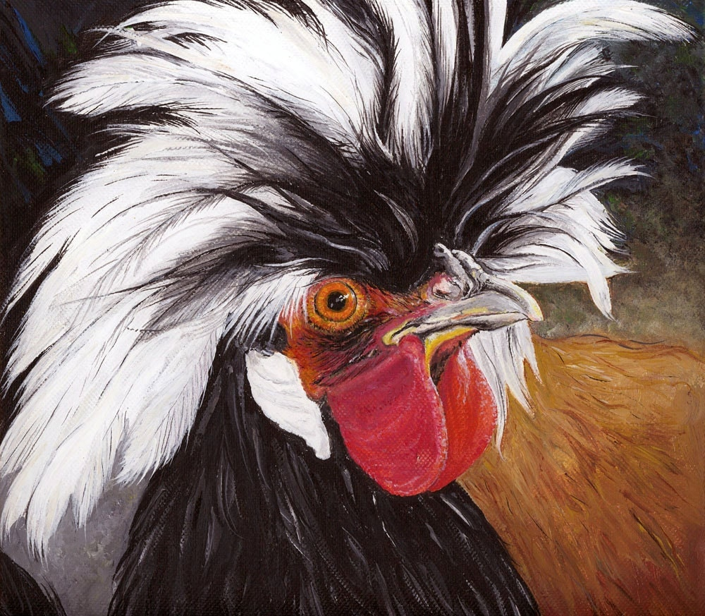 White Crested Black Polish Chicken Gicl 233 E Print With Mat