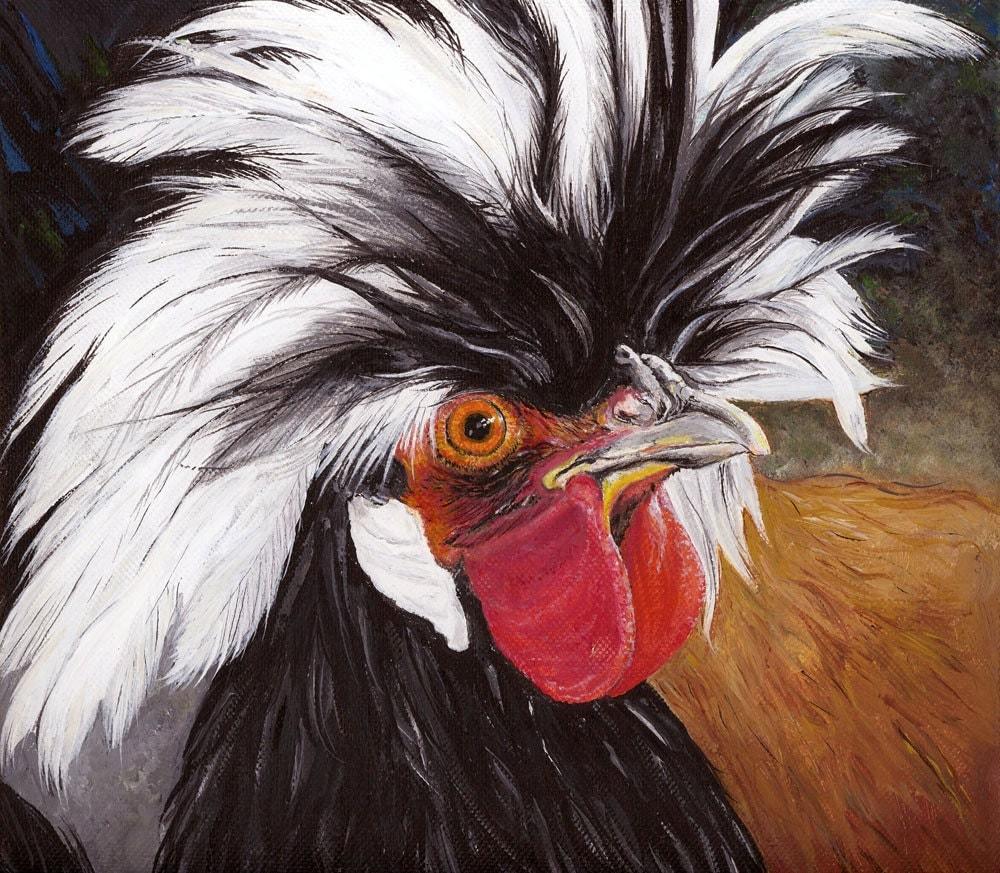 White polish chicken - photo#28