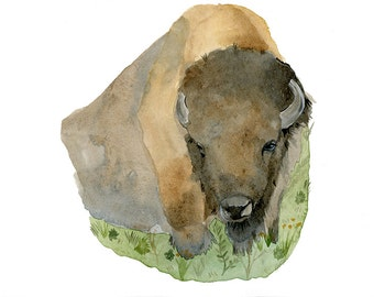 Watercolor Painting Buffalo, Bison Roaming Prairie Archival Print 5x7