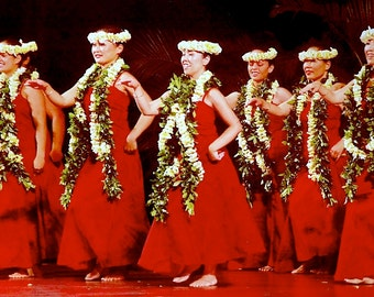 Custom - Authentic Hula Dress