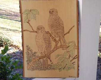 Hawks Woodburning Pyrography