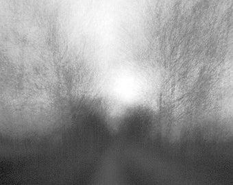 Winter : 76 x 43 cm / 30 x 17 inch Digital C Print