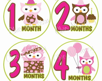 Birthday Owls Pink- PRINTABLE Round Monthly Infant Stickers-.PDF Instant Download Digital file only-Item No. MS008