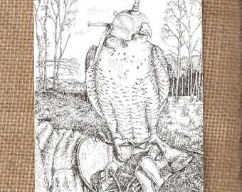 Peregrine Falcon, Harris Hawk & Little Owl - Pack of 9 Postcards