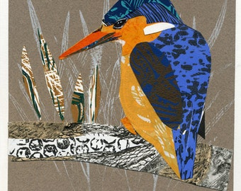 Collaged Kingfisher bird print