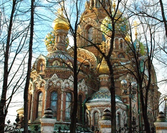 Church on Spilled Blood. Ancient architecture. Landscape photography. Winter. Onion domes. Trees.  St. Petersburg, Russia.
