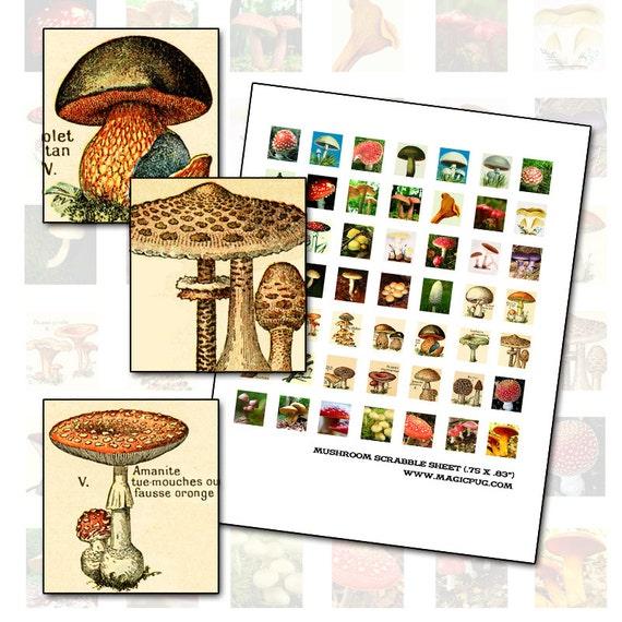 Mushroom Toadstool Scrabble tile digital collage sheet .75 x .83 inch Scrabble 19mm x 21mm
