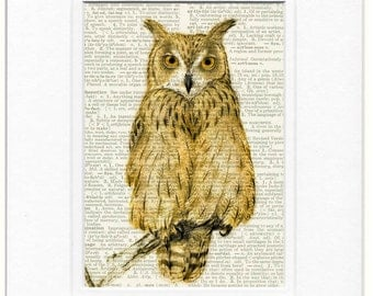 Owl, Eagle Owl painting printed on vintage dictionary page