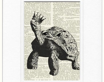 Princely turtle print