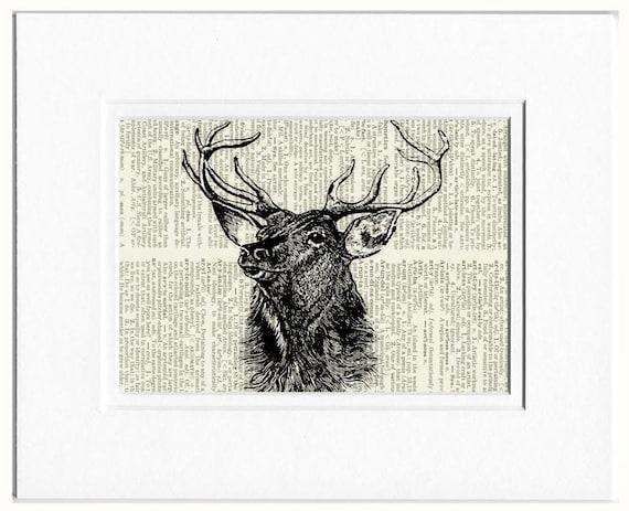 deer portrait I print