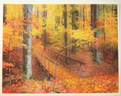 Art, Autumn footbridge, Michigan artist, photography, nature, tree art, Fine Art photograph, Michigan photography, nature photography