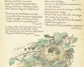Bird Print - Blackbird Egg Nest - Vintage Bird Book Plate Print - Country Diary of Edwardian Lady - Edith Holden - E B Browning - 1906
