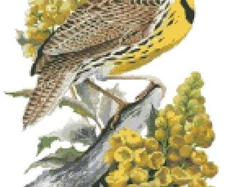 Oregon State Bird & Flower Counted Cross Stitch Pattern