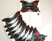 60s Paper Ephemera  Aloha Butterfly Hawaiian Motif Set of 10