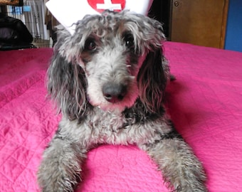 NURSE or CANDY STRIPER Dog Hat - choose - up to 20 lb dog or cat