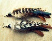 Beaded Feather Earrings - Natural Colors, Brown, Black and White Striped Rooster Feathers