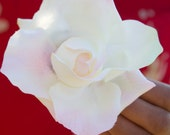 Strawberry Cream // White and Pink Rose Silk Hair Flower Clip // Natural Hair Products // Retro Pinup Inspired Piece // Great with Swimwear