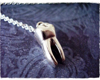 Large Molar Tooth Necklace - Sterling Silver Molar Tooth Charm on a Delicate Sterling Silver Cable Chain or Charm Only