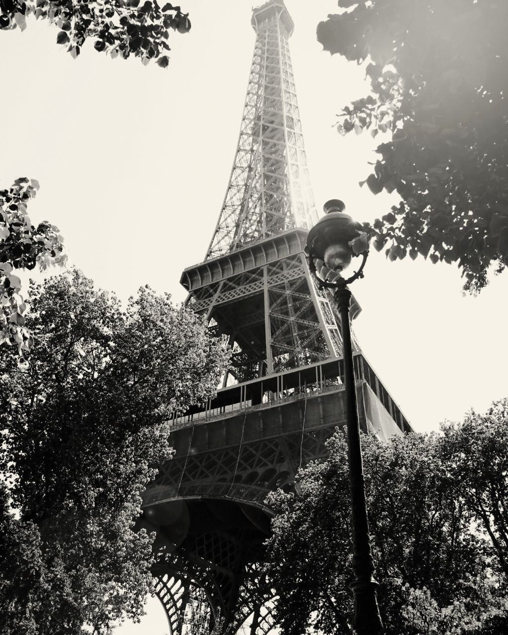Eiffel tower photograph in black and white paris for Eiffel tower wall mural black and white