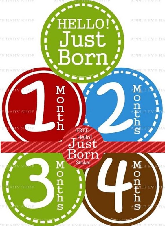 1st Year Baby Month Stickers, PLUS Just Born Sticker, Baby Boy Milestones Stickers, Monthly Bodysuit Stickers, Red Blue Brown Green