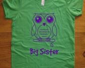 Big Sister Shirt - 8 Colors Available - Kids Owl Big Sister T shirt Sizes 2T, 4T, 6, 8, 10, 12 - Big Sister Gift Friendly
