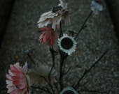 "8x12 Print : ""Unseen"" by Brittanie Pendleton, Nature Cemetery Flowers Closeup Photography - beyourpet"
